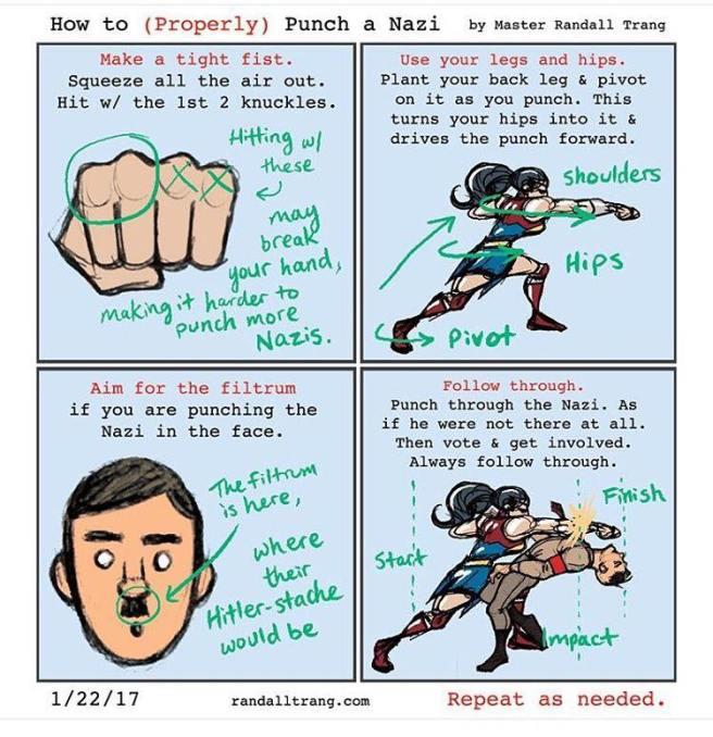 nazi-punch